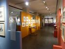Les expositions temporaires